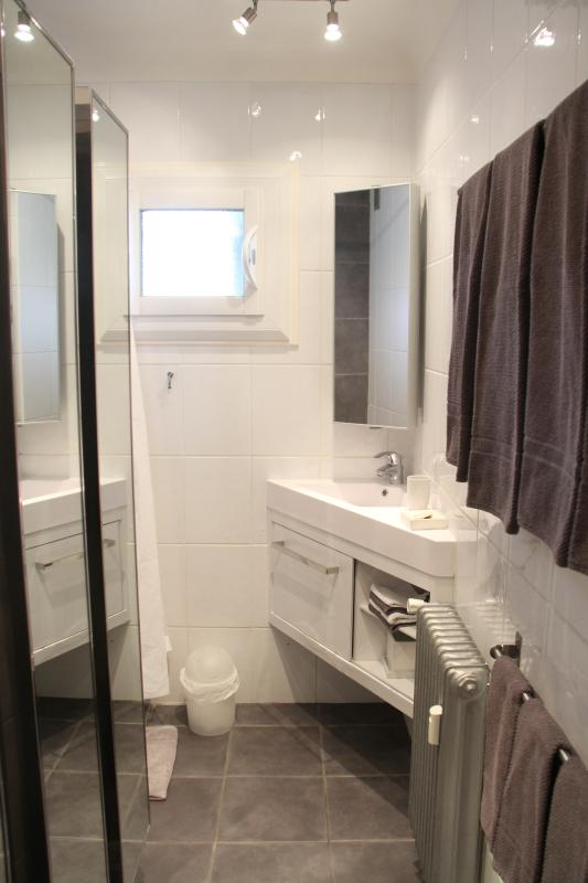 Elegant and functional bathroom with shower