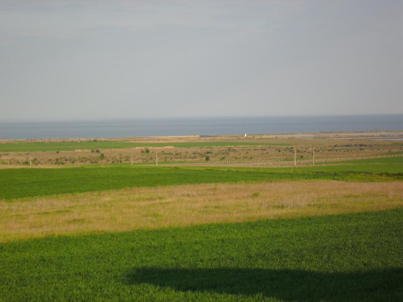 Peaceful surroundings with sea views