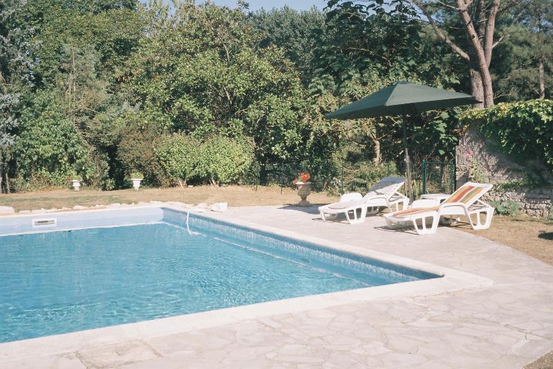 Pool, parasols, sunbeds...