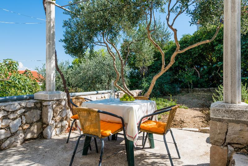 the terrace with small flower garden and olive tree
