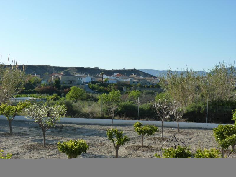 Views to Locaiba