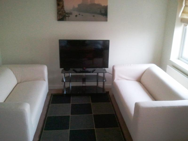 Two 3 seater sofas at one end of the sitting room.