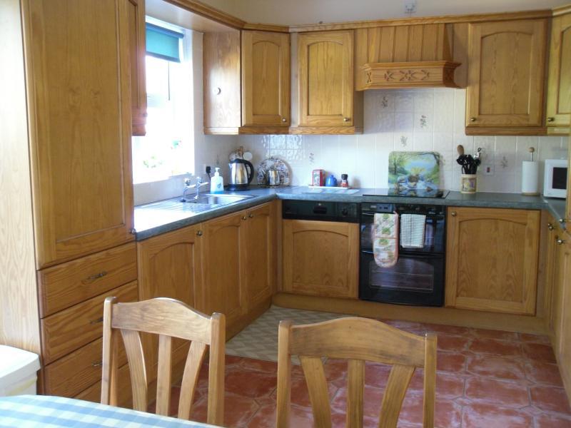 kitchen area of kitchen/diner