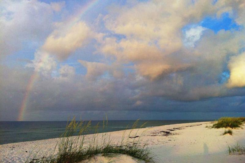 Come discover the treasures waiting for you in Pensacola at Perdido Key and our beautiful beaches!