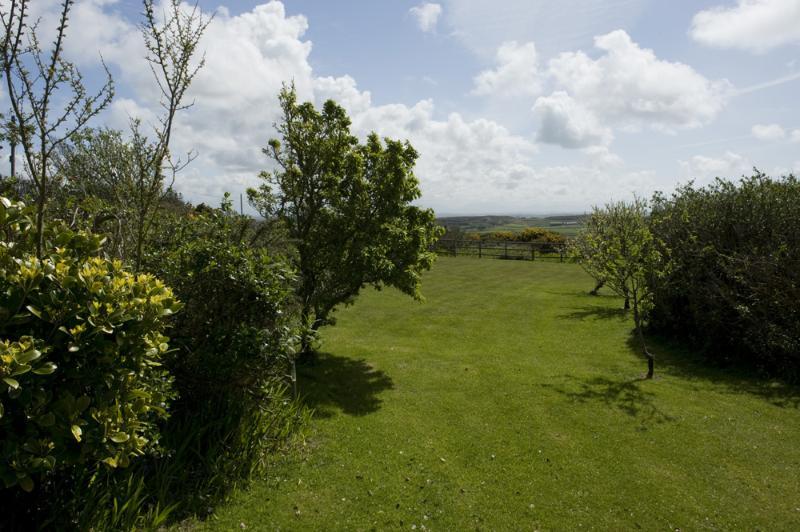 Vackra grönskande trädgård att koppla av och bra för barnen att leka