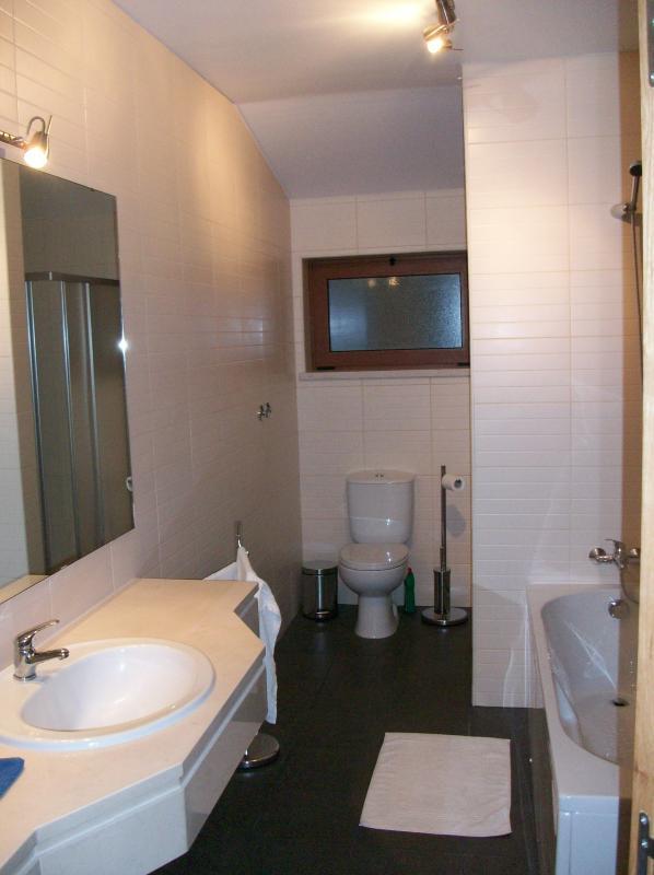 Ensuite bathroom/shower for master bedroom