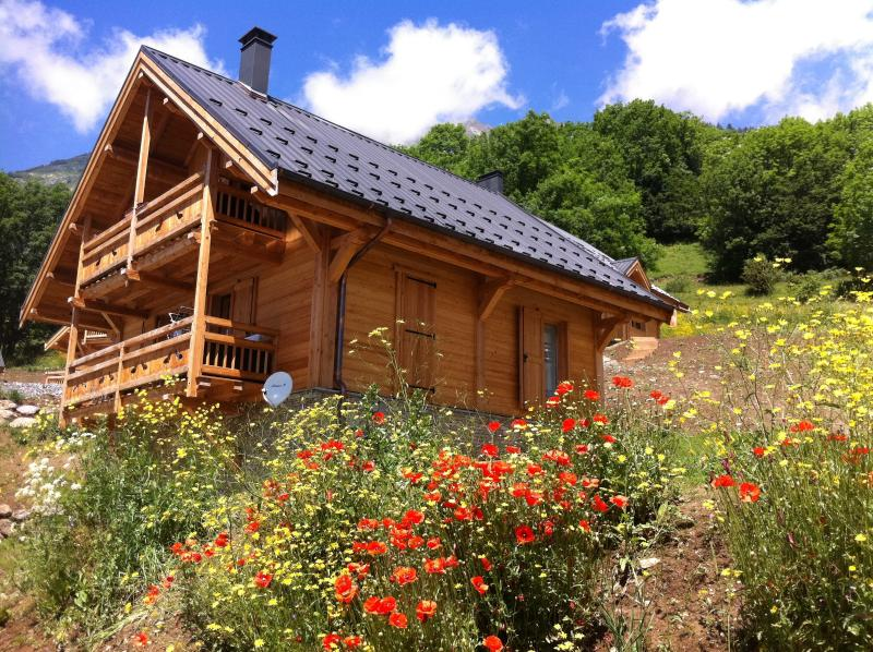 Alpine Summer Activities and Winter Ski Chalet sleeping 8-10, vacation rental in Vaujany