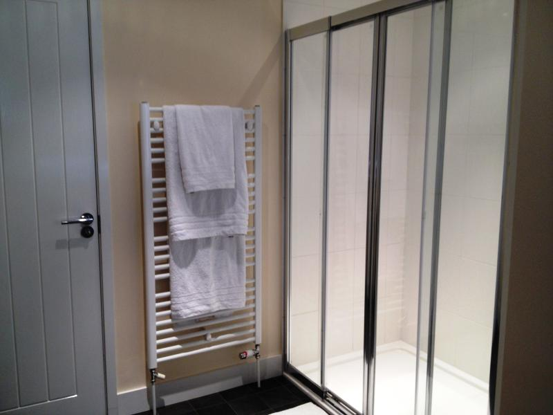 Walk-in showers in shower room and utility room