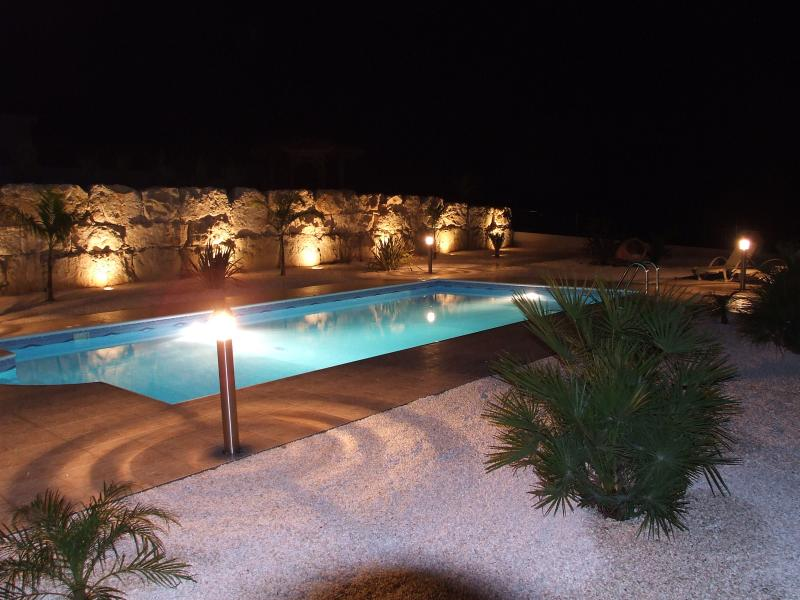 Pool and Rear Garden at Night