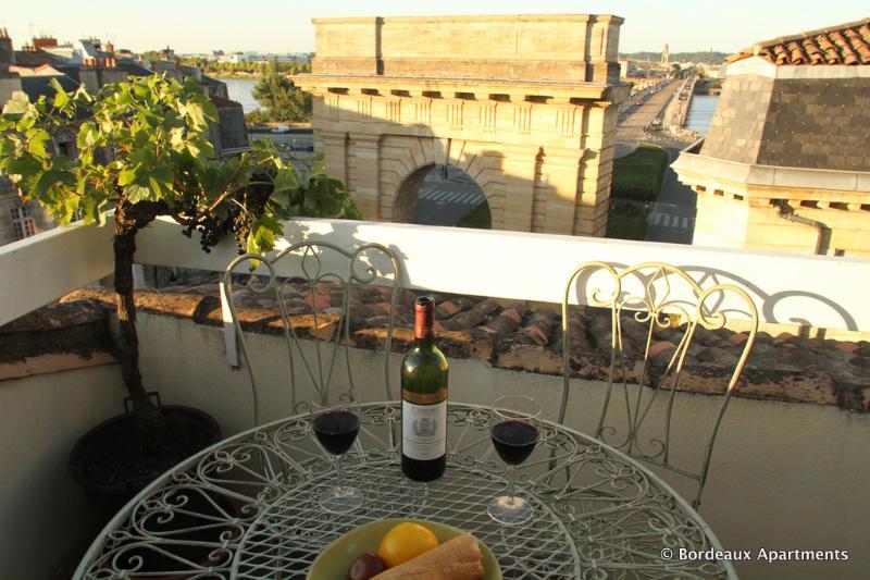 Bordeaux Terrace - spectacular view, historic centre, vacation rental in Bordeaux