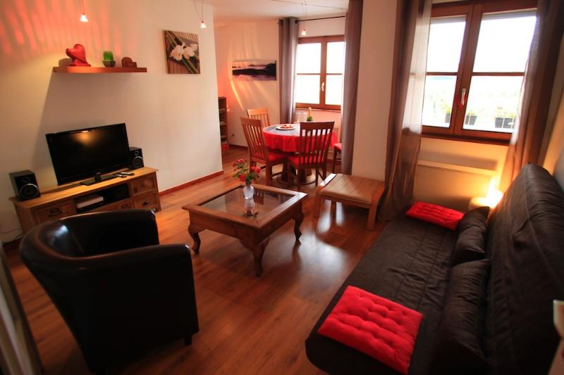 Appartement 'Le Schoenenbourg', holiday rental in Beblenheim