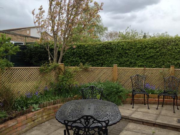 Bandera Polo del cerezo en el jardín, hermosa en la primavera.