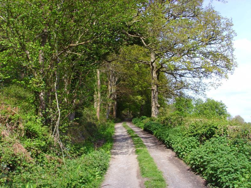 La pista hasta cabañas de madera de Porthouse