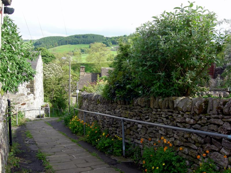 Bankside -  a steep path down to the beautiful dale