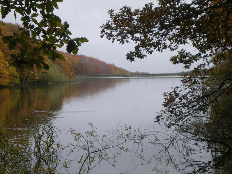 One of the Linacre Reservoirs in autumn