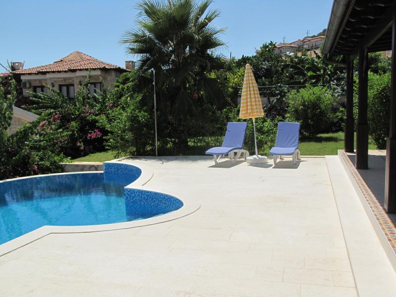 your pool and the garden