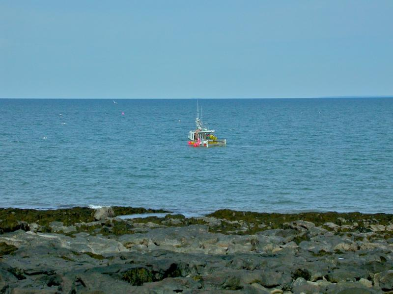 A lobster boat checks the day's catch