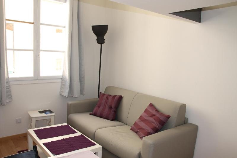 Quiet and bright living room. 3 seats convertible couch