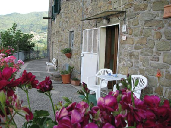Tuscany Lucca typical house, holiday rental in Castelvecchio