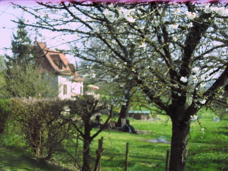 Sérendipité - a charming Perigordine ensemble of farmhouse and pigeonnier., holiday rental in Saint-Aubin-de-Cadelech