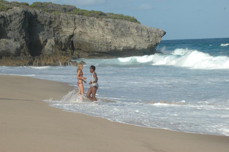 Cassie sulla spiaggia