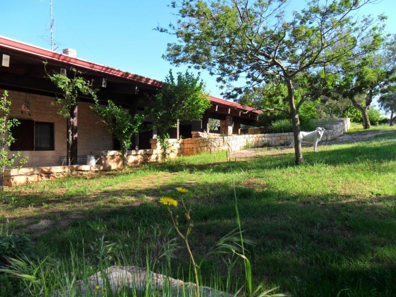 A propriedade, a casa de dois vista de pines_panoramic