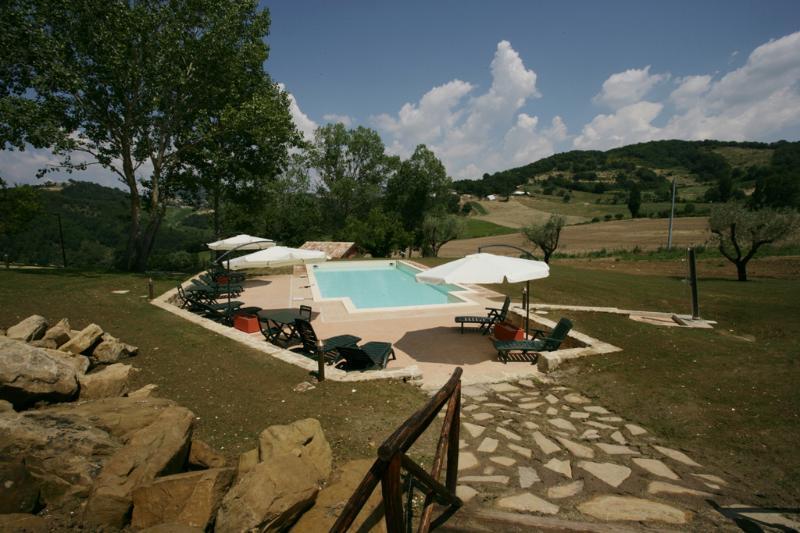 Swimming Pool and Surroundings