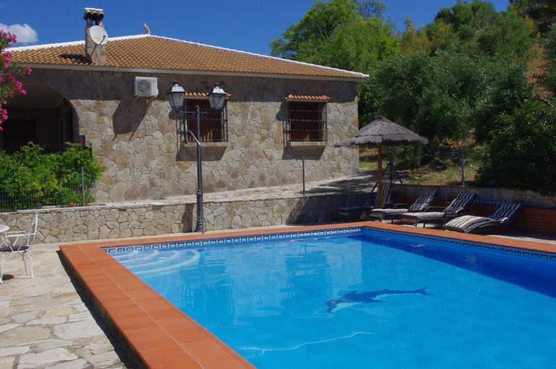 piscina con hamacas