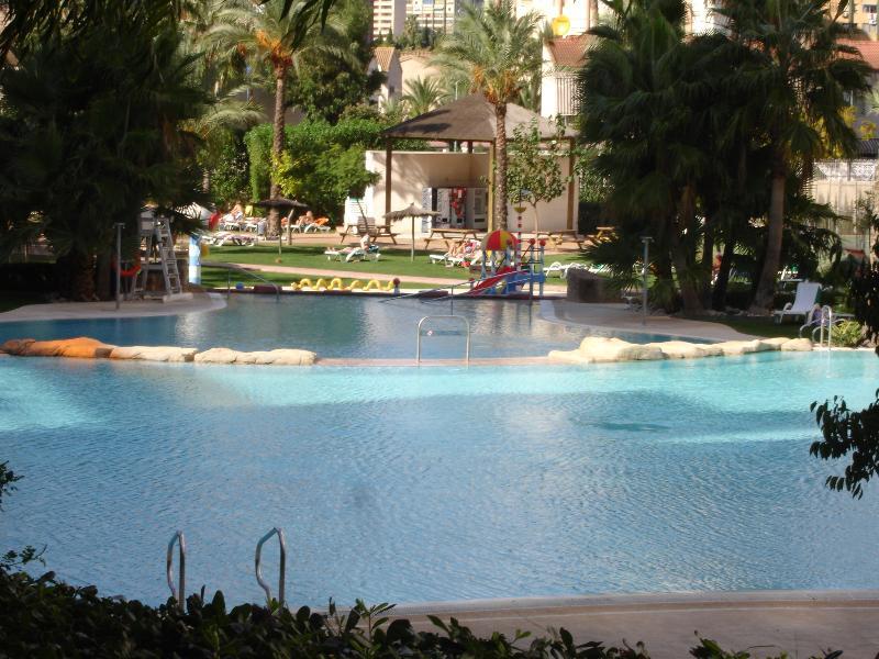 Lake style swimming pool