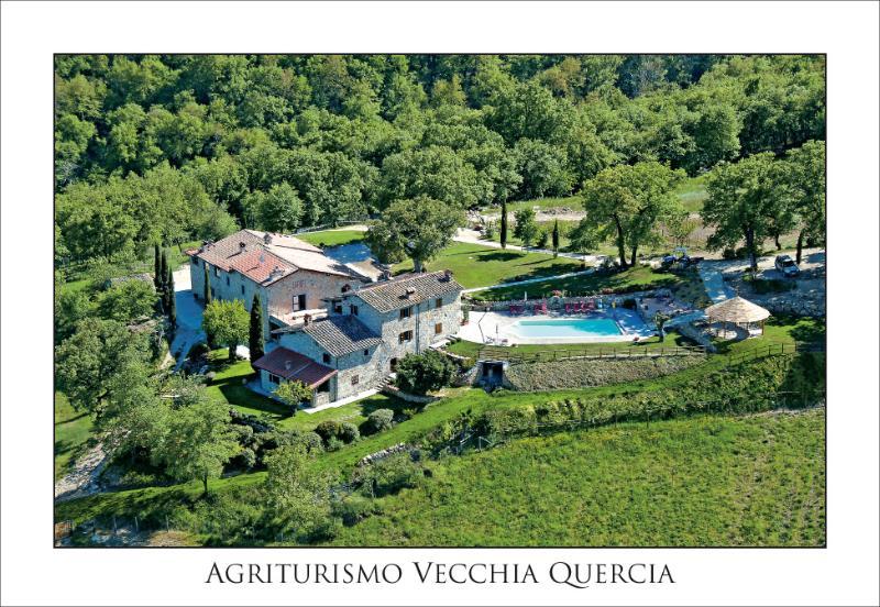Fattoria Vecchia Quercia, holiday rental in Quota