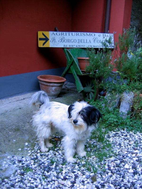 Nanà welcomes you to the village
