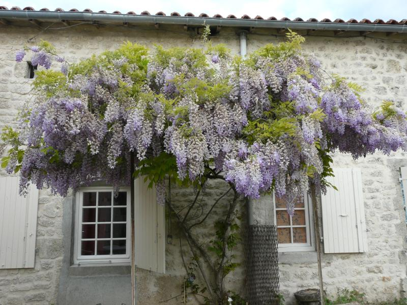 Chez Mirabelle, holiday rental in Cresse