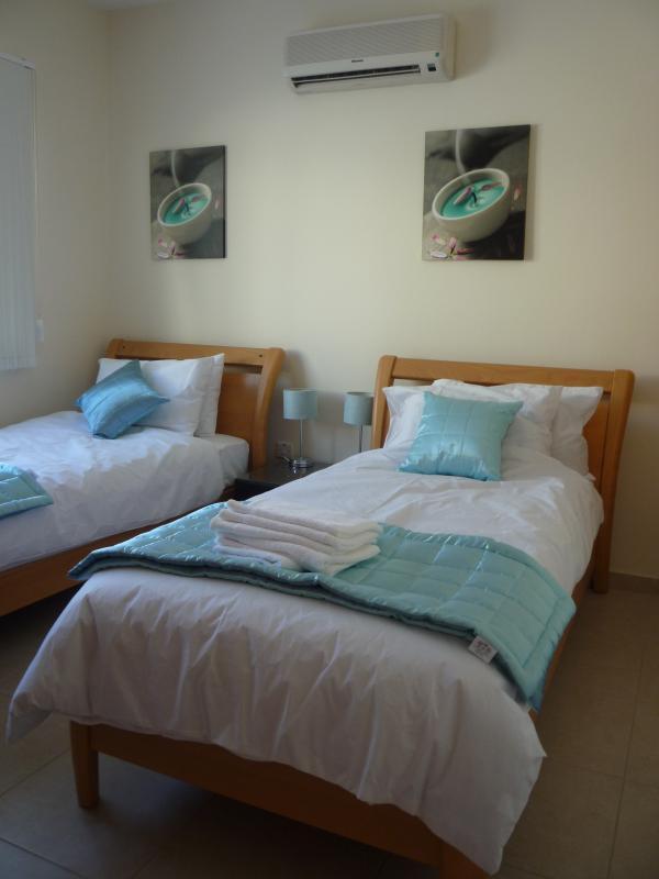 Blue bedroom with en suite shower room