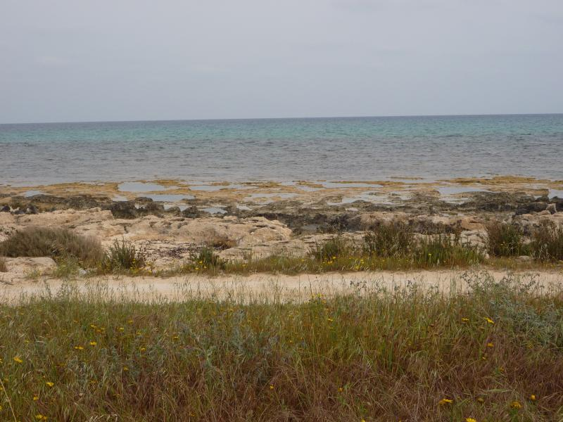 Long walks along coast area, Larnaca