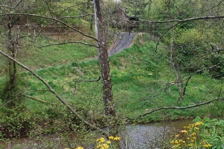 Helton Creek Trout Stream