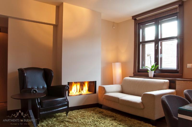 34 avis et 15 photos pour andrassy2 apartment luxury fireplace free wifi tripadvisor. Black Bedroom Furniture Sets. Home Design Ideas