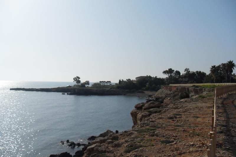 Further Coralli views