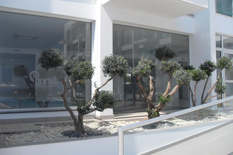 Coralli Reception Area