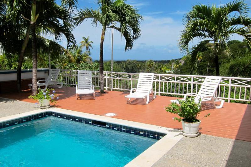 Pool Deck with shade under the Palms