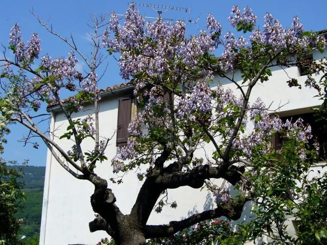 Maison Esmerelda, vacation rental in Le Bosc