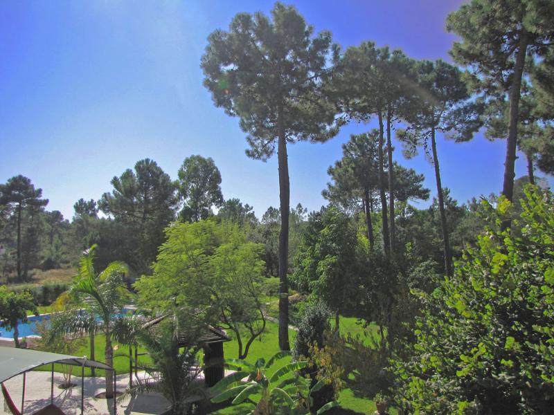 Garden viewed from the villa