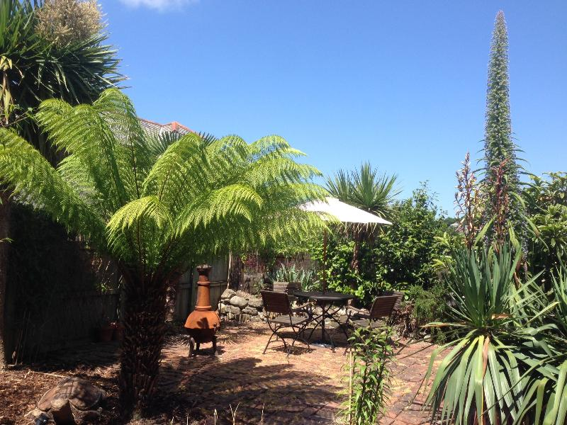 Quiet secluded tropical garden lovely palms and exotic plants.
