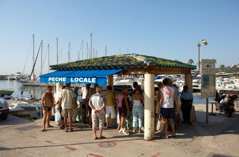 Mercado de pescado local
