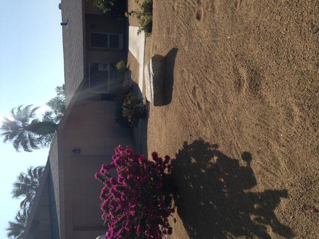 Front yard - komplett mit köstlichen Orangenbaum vor
