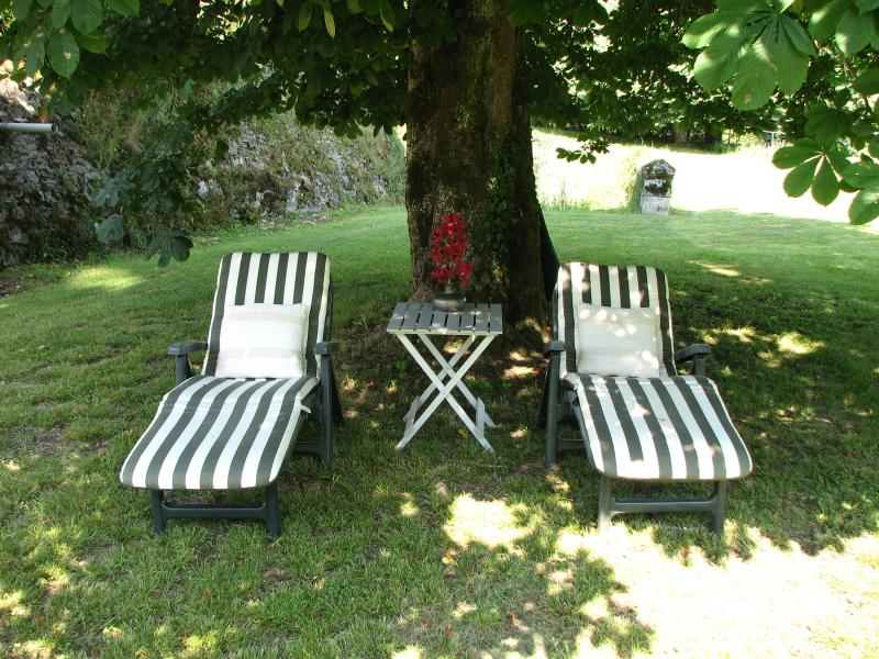 Relax under the ancient Chestnut Tree in the Courtyard.
