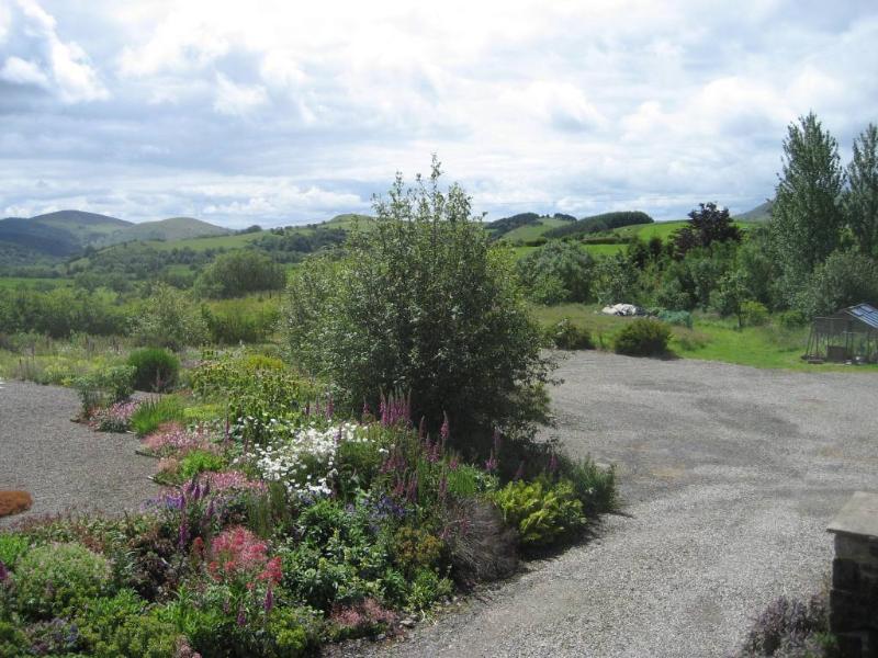 Grands jardins et prairie de fleurs sauvages isolé