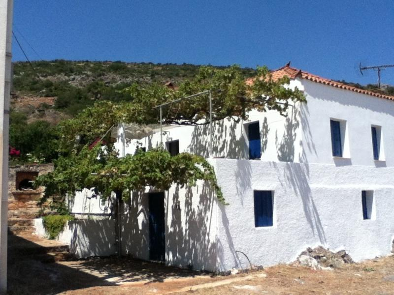 The house covered in grapevine with sea views