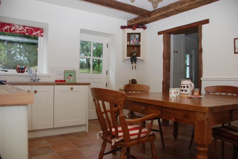 Kitchen with large family dining table