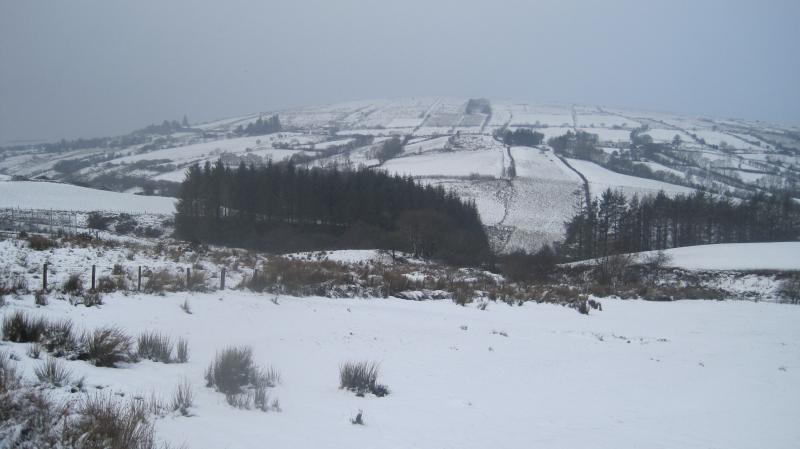 Local landscape in winter