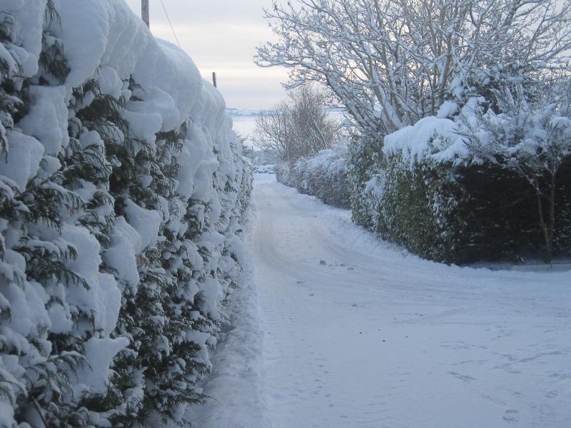 Hawthorn cottage lane in winter